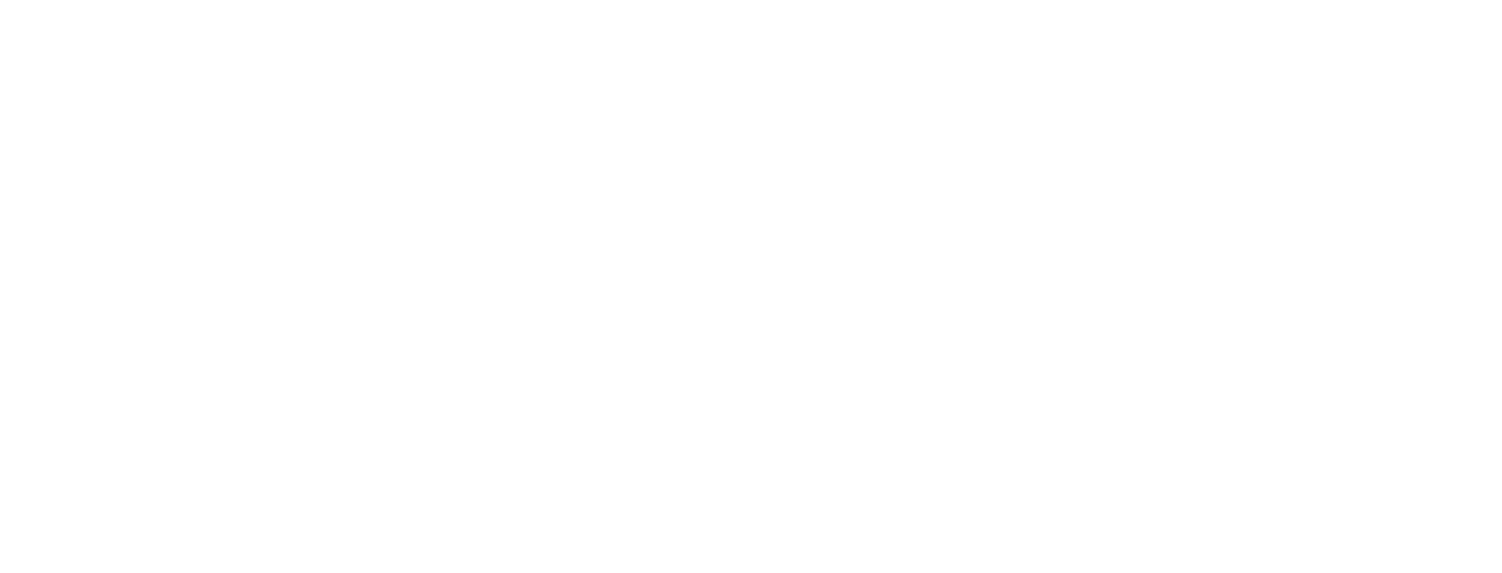 long arrow icon