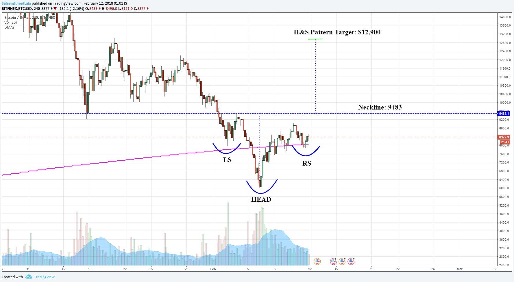 Crypto Trader Investor
