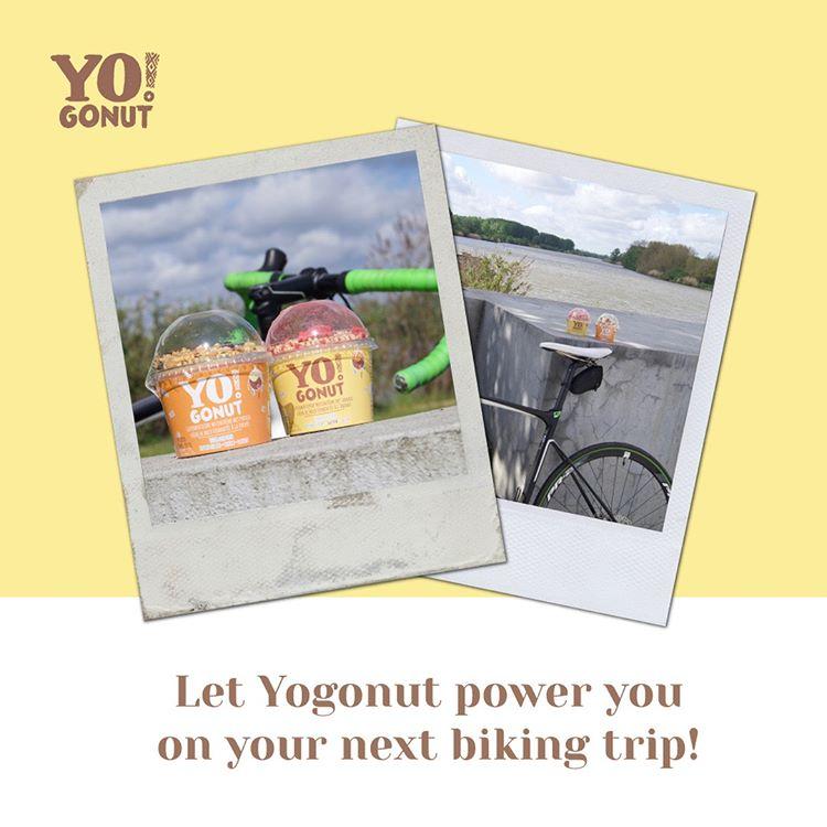 yogonut-insta