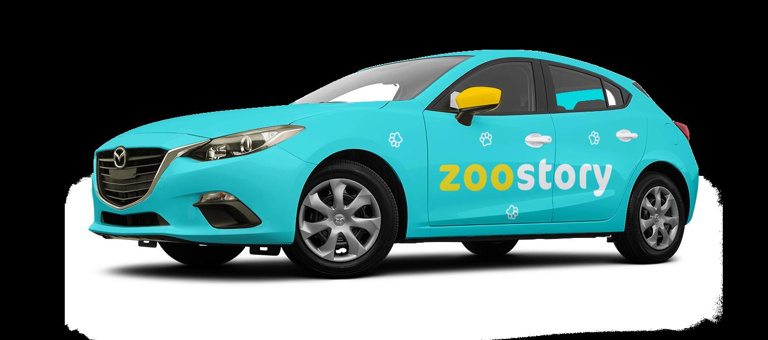 Skuteczny branding zoostory