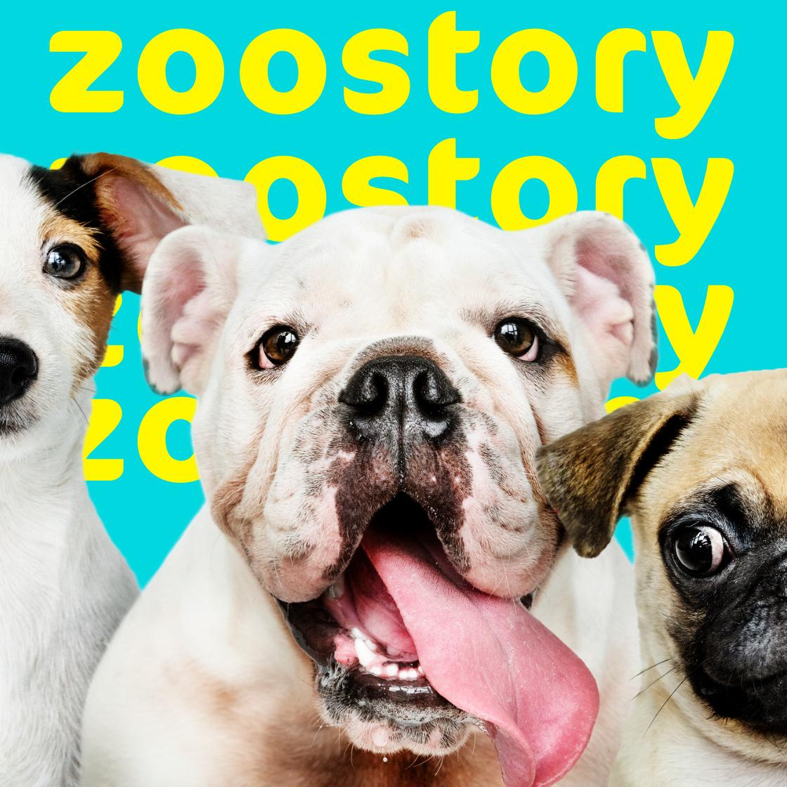 Branding zoostory