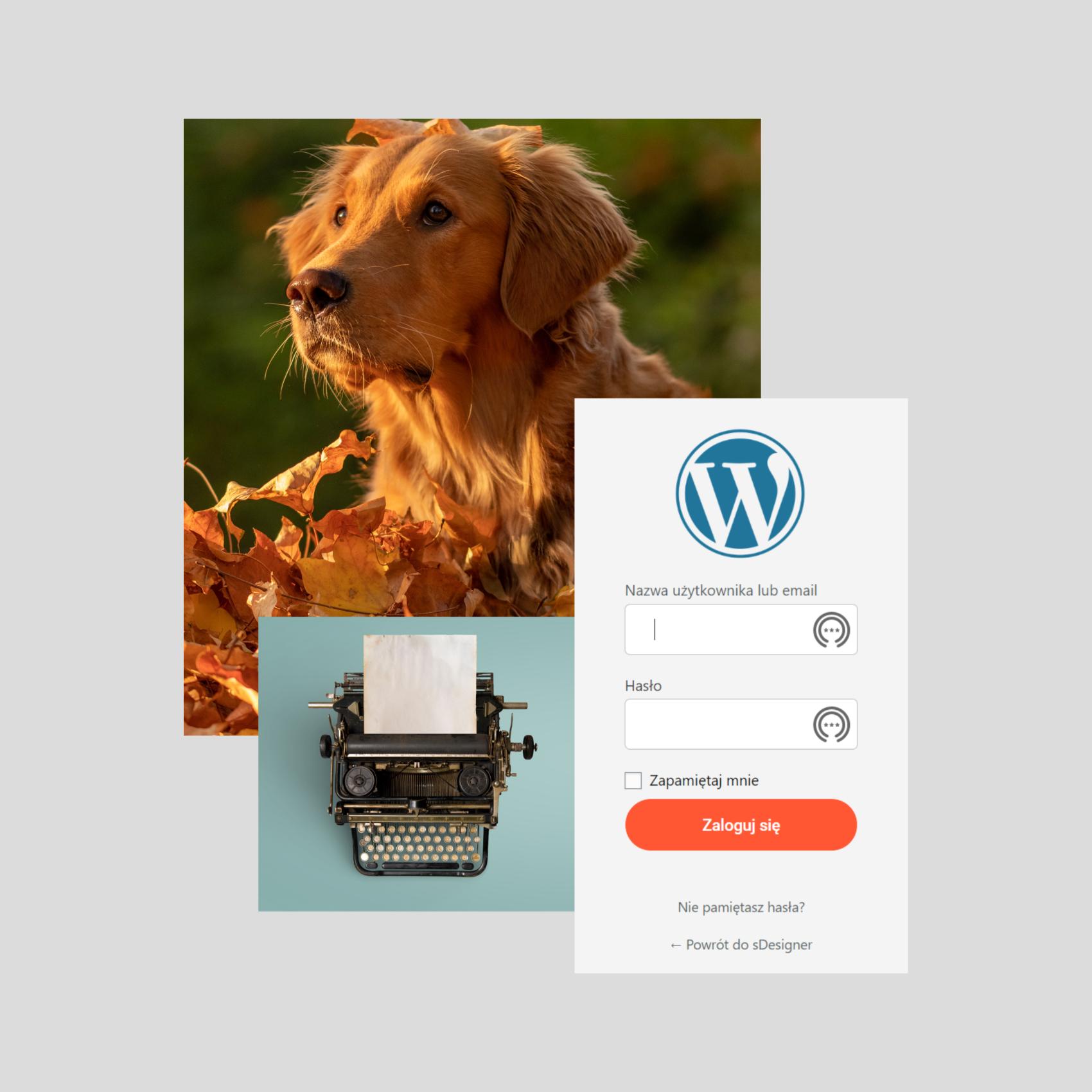 Opieka nad stroną www wordpress