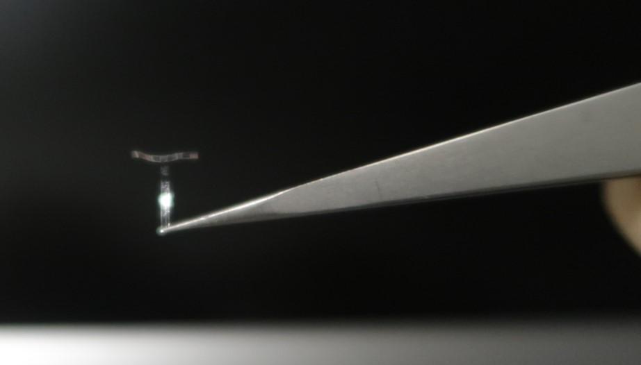 Catom's flexiboard