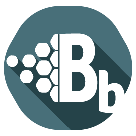 Logo of Blinky Blocks, one of our section