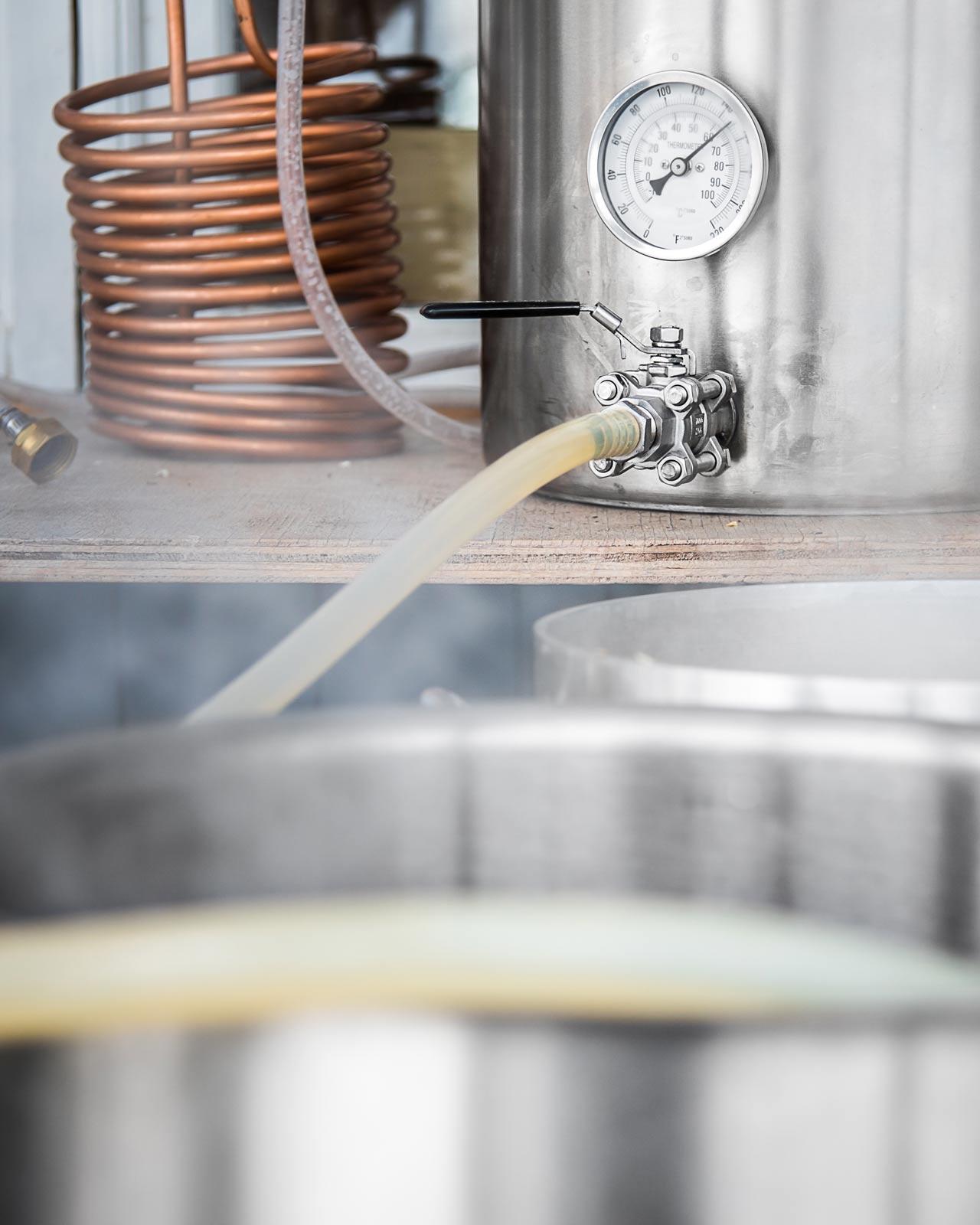 hops brewing