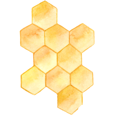 Honey Illustration