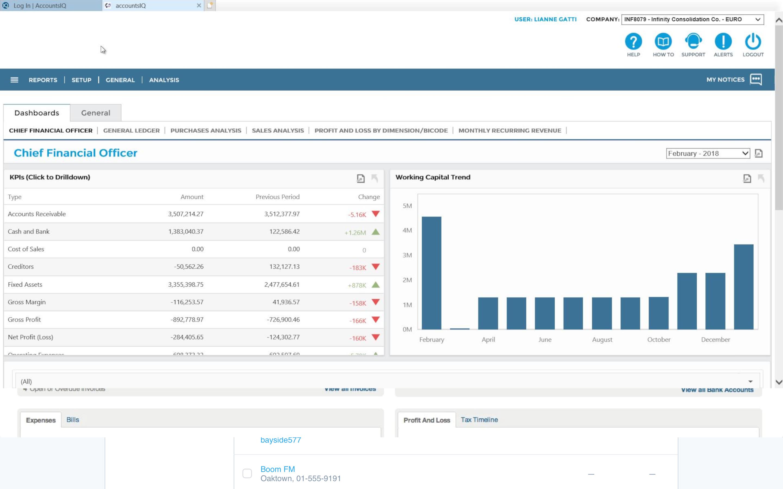 AccountsIQ-Screenshot