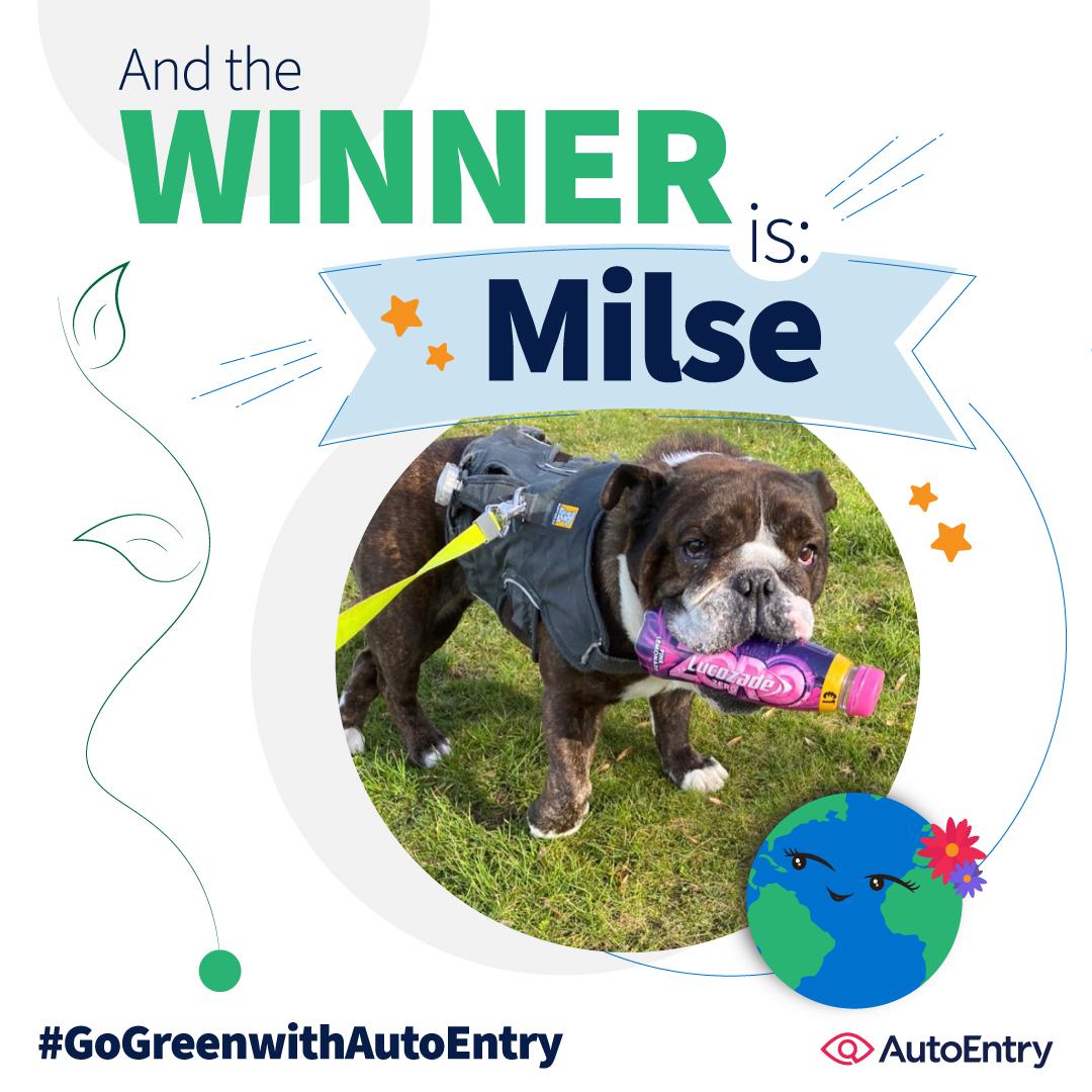 Earth Month winner - Milse the dog!