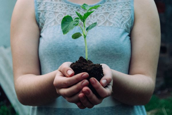 Woman holding earth and plant