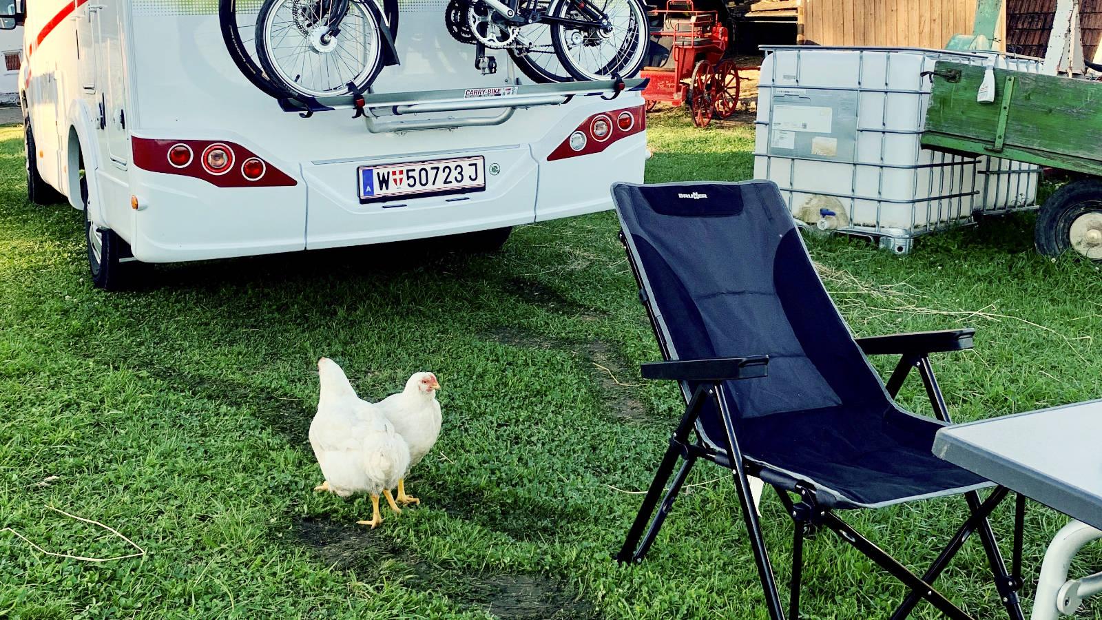Mit dem Wohnmobil am Bauernhof