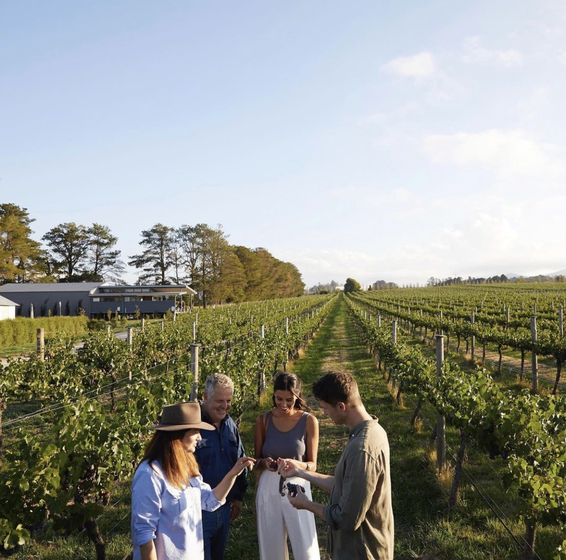 Rowlee Wines. #GoHyperlocal Guide to Orange NSW - Curated by Travis for your next Australian getaway