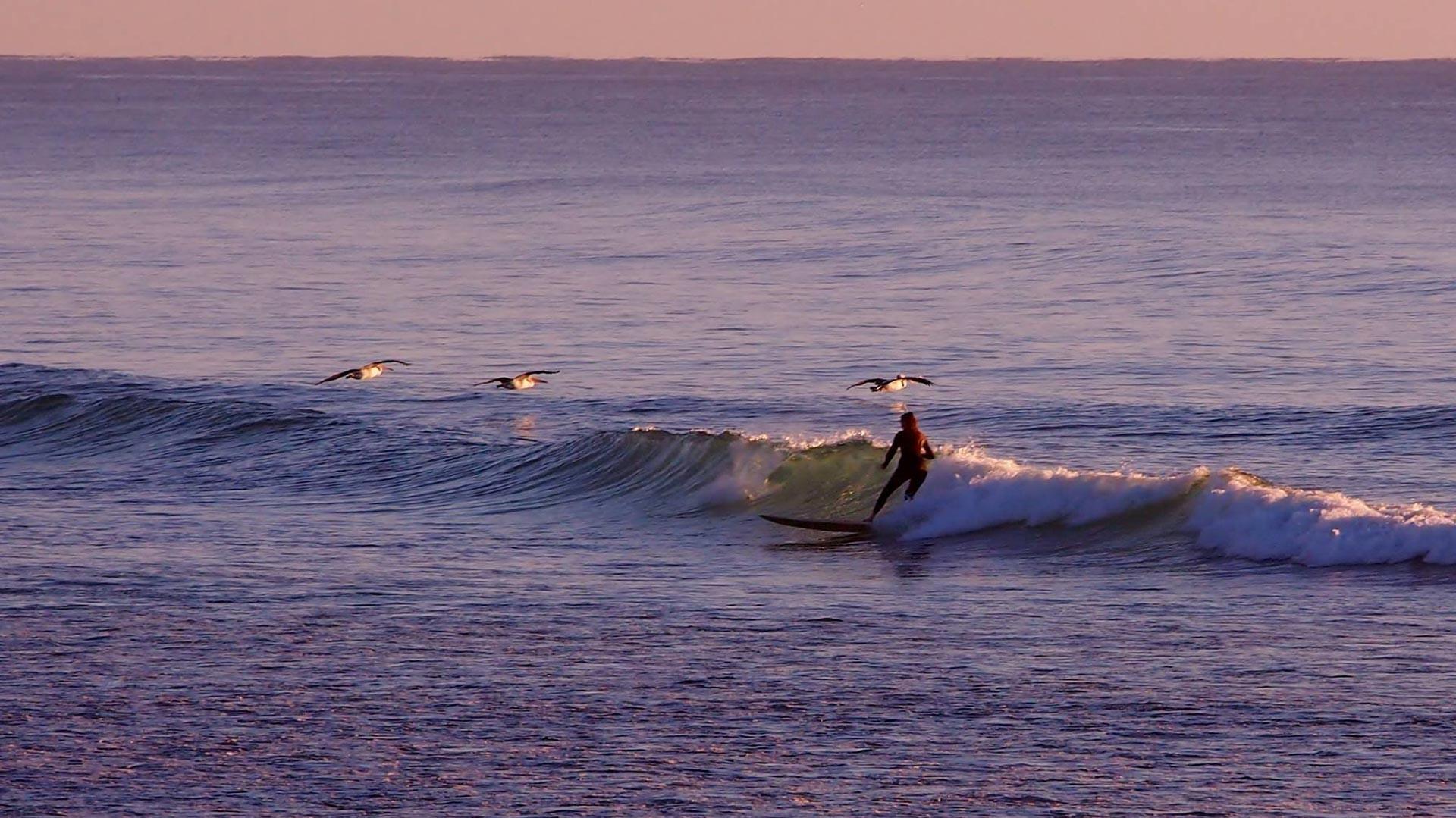 Travis Byron Bay Guide - Surfing in Byron Bay