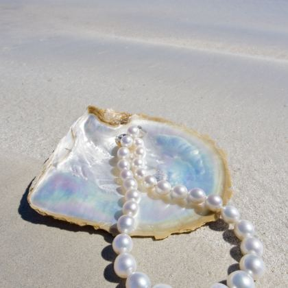 Travis Broome Guide - Pearl and shell are on the beach