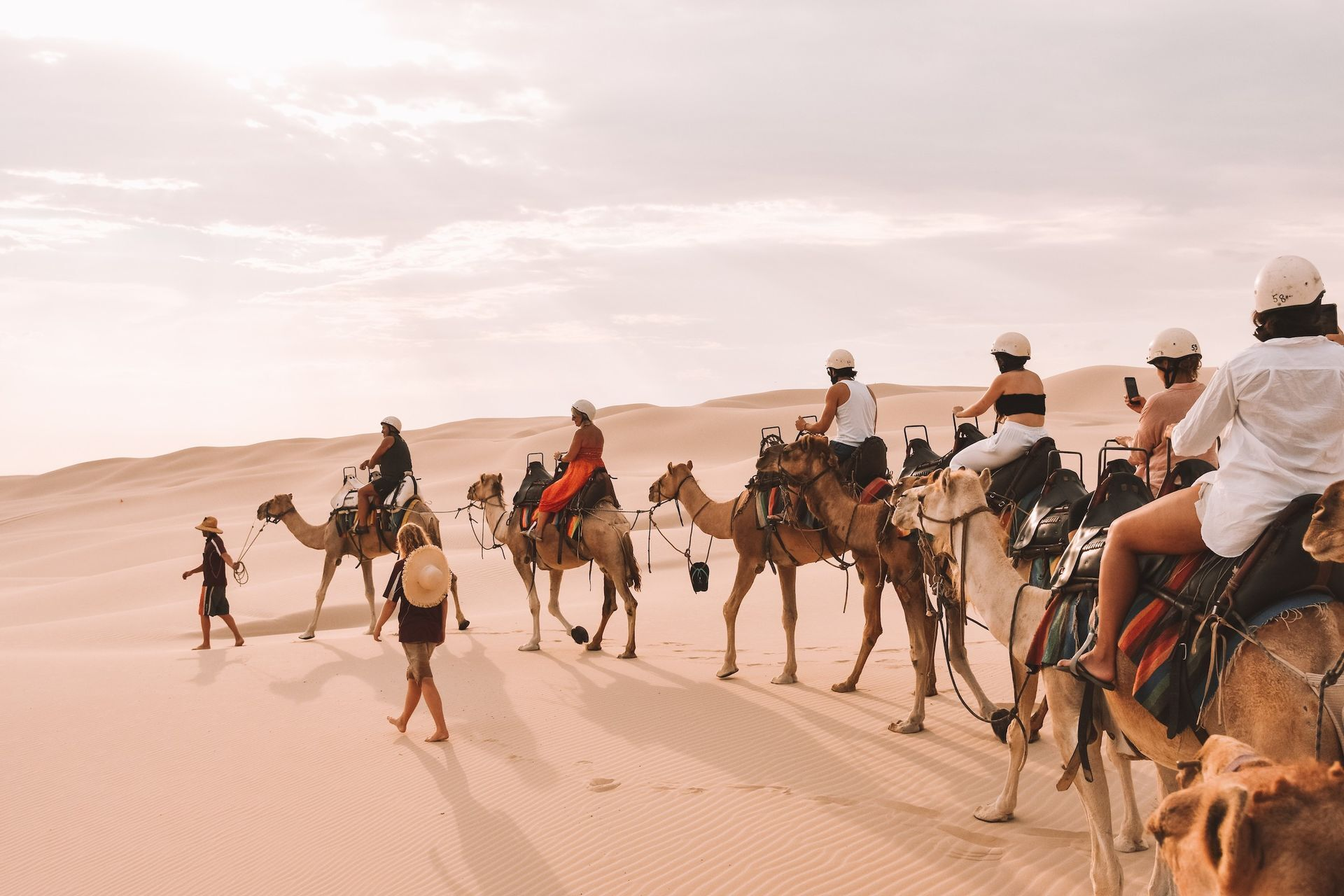 Port Stephens Oakfield Ranch Camels Krystal Mckinley