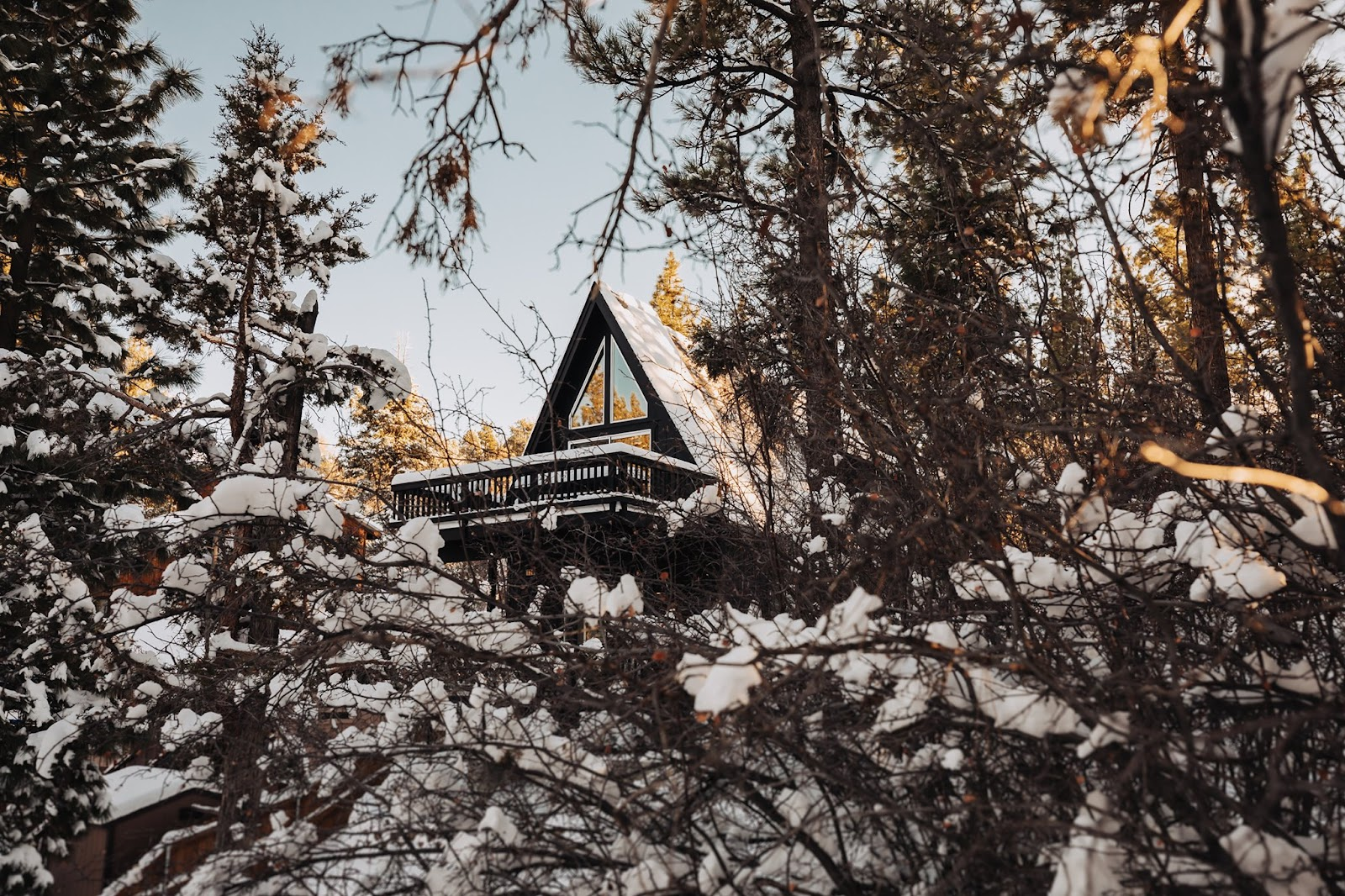 Exterior of Little Black Cabin which is covered in snow and surrounded by tall gum trees