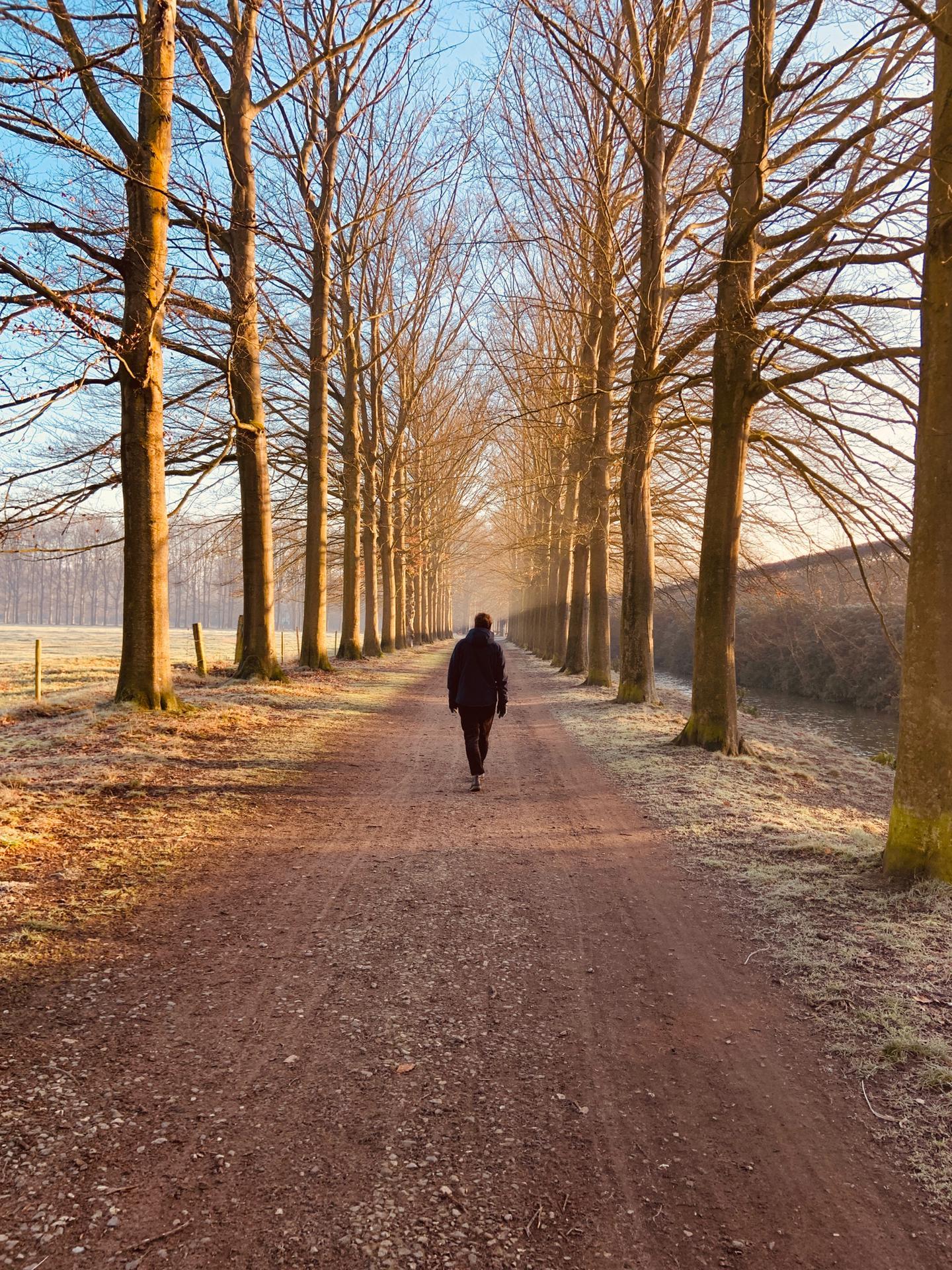 Mooi wandelpad in Schoten dicht bij de bed & breakfast