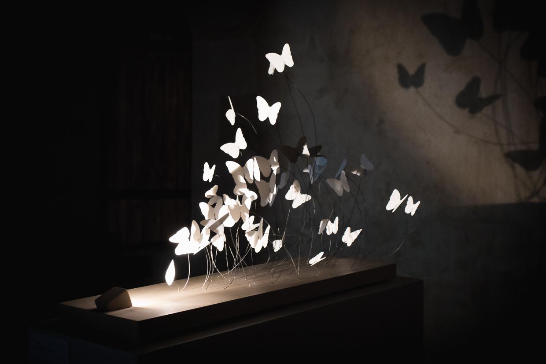 Photo of a shadow art sculpture