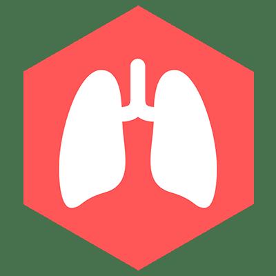 Respiratory Icon