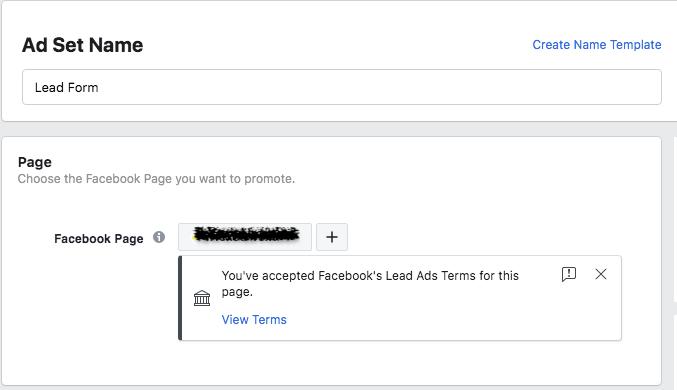 FB lead ad set name