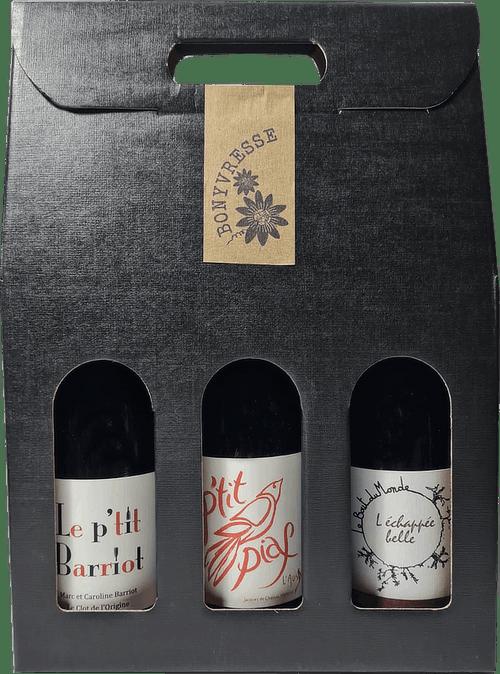 coffret 3 bouteilles de vins rouges naturels pour l'apéro