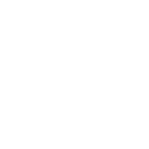 Indra - email us icon