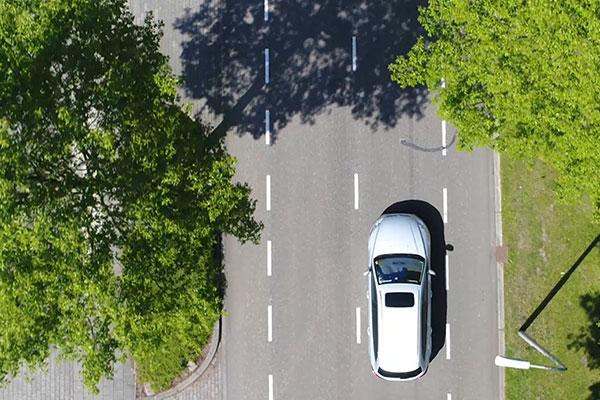 Indra  - Image car tree