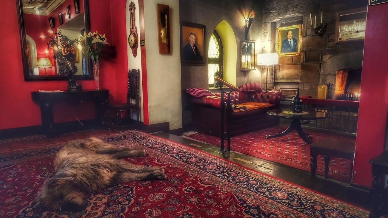 Cabra Castle Hallway with Dog