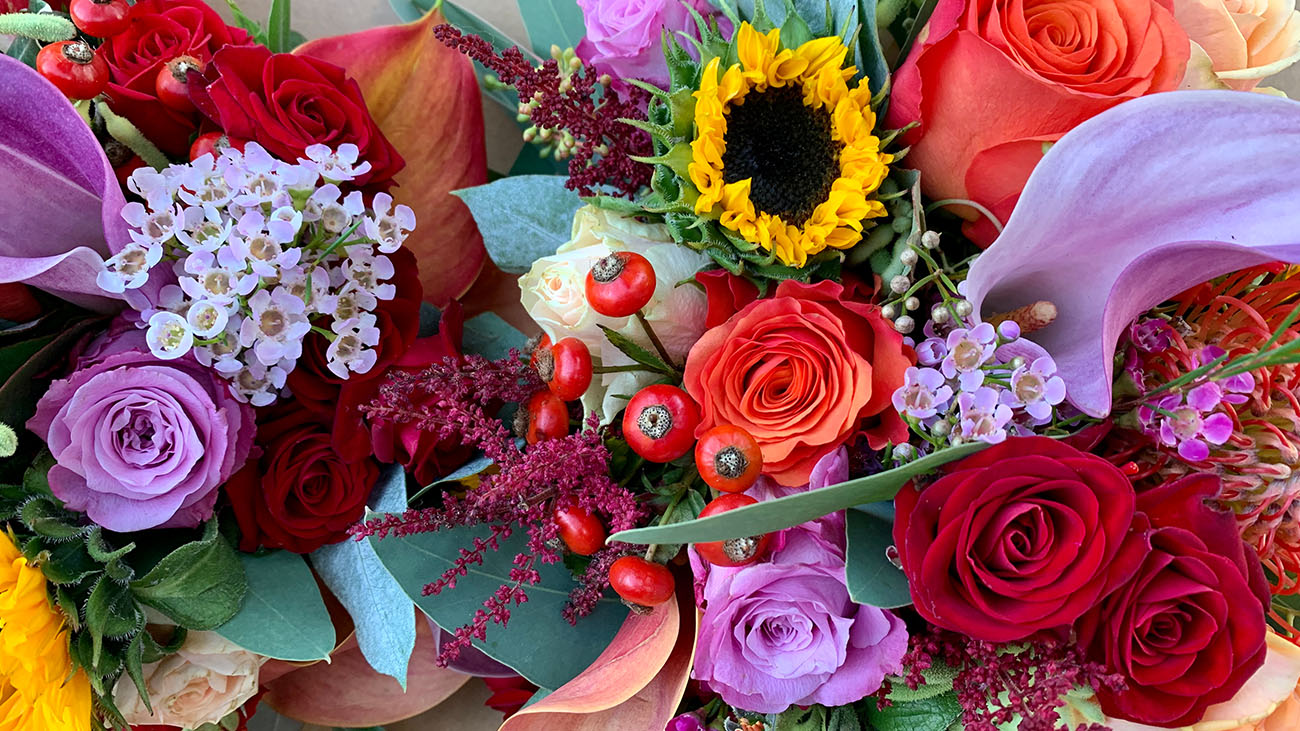 Orlagh Dooley Flowers