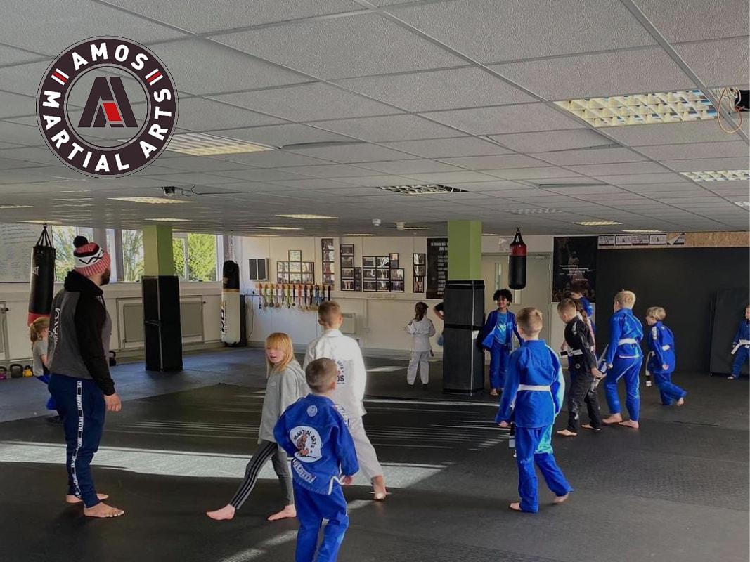 Amos Martial Arts