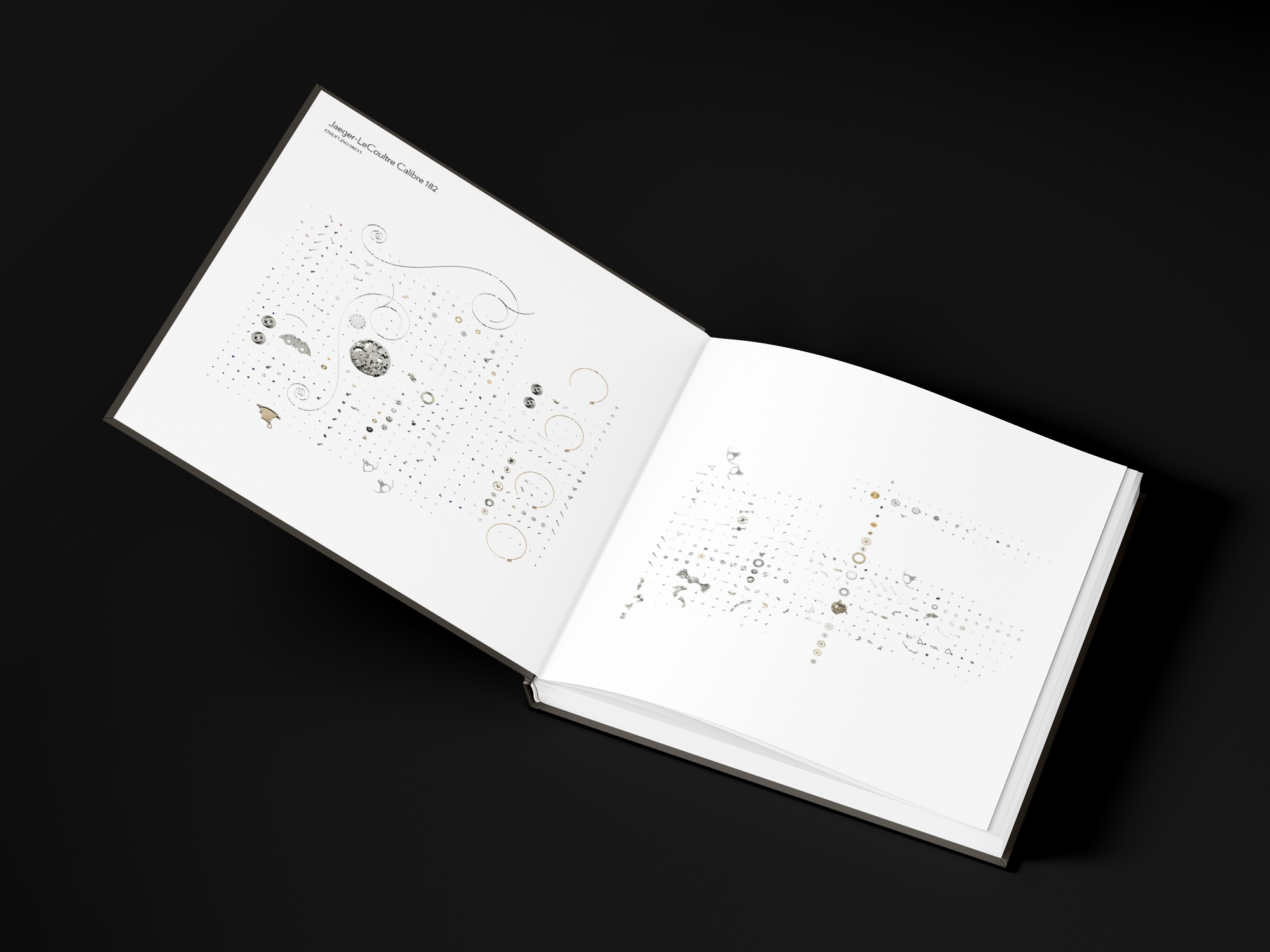 graphiste freelance livre de luxe