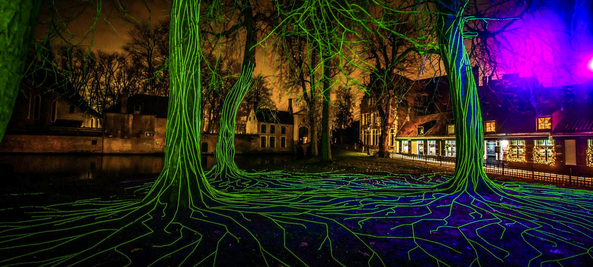 Trees in a park near Bruges city centre with vein-like green Christmas lights running up the bark, Bruges, Belgium