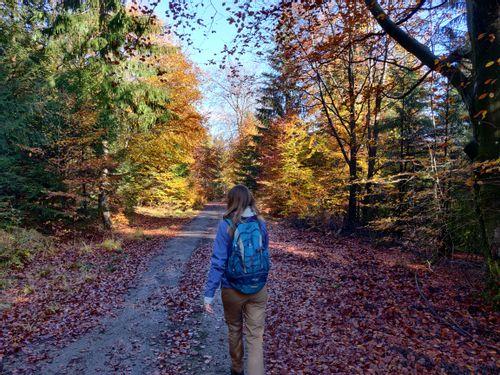 """""""Chemins de Solitude"""" Hike"""