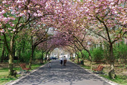 Josaphat Park