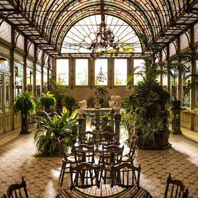 Art Nouveau style winter garden conservatory with stained glass roof with various greenery in Ursuline Winter Garden