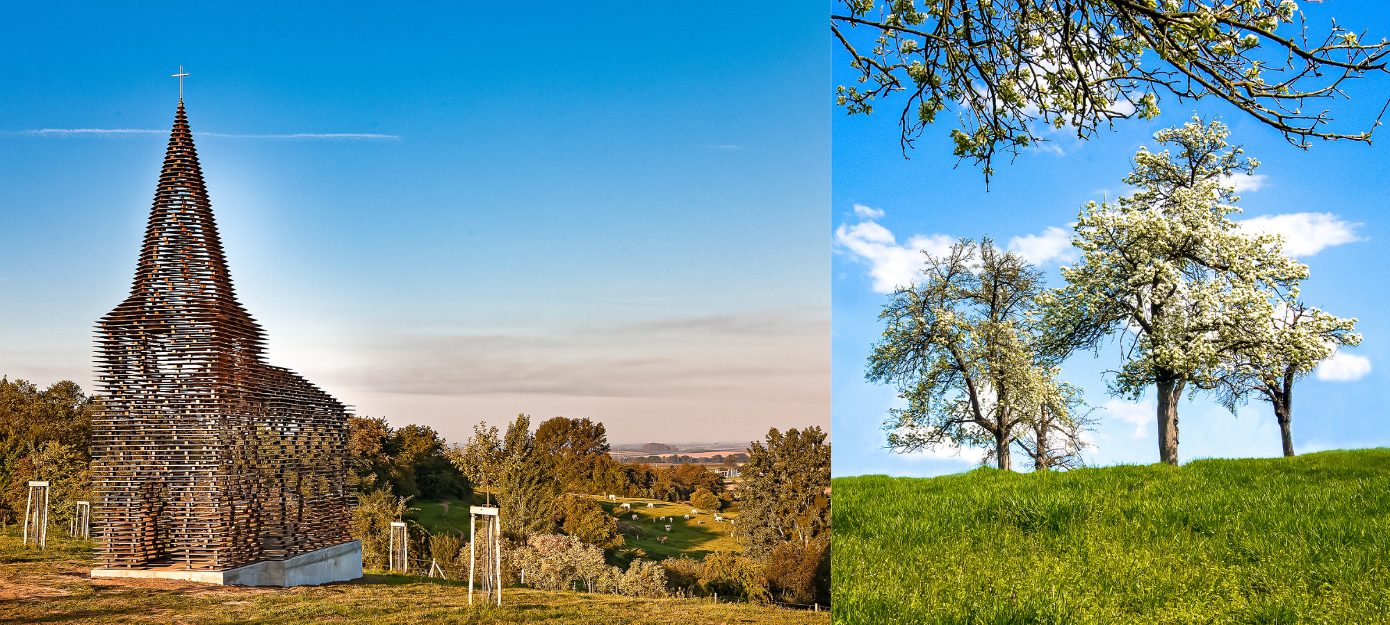 Left: Reading Between the Lines Church, Antwerp. Right: Trees in a field, Belgium.