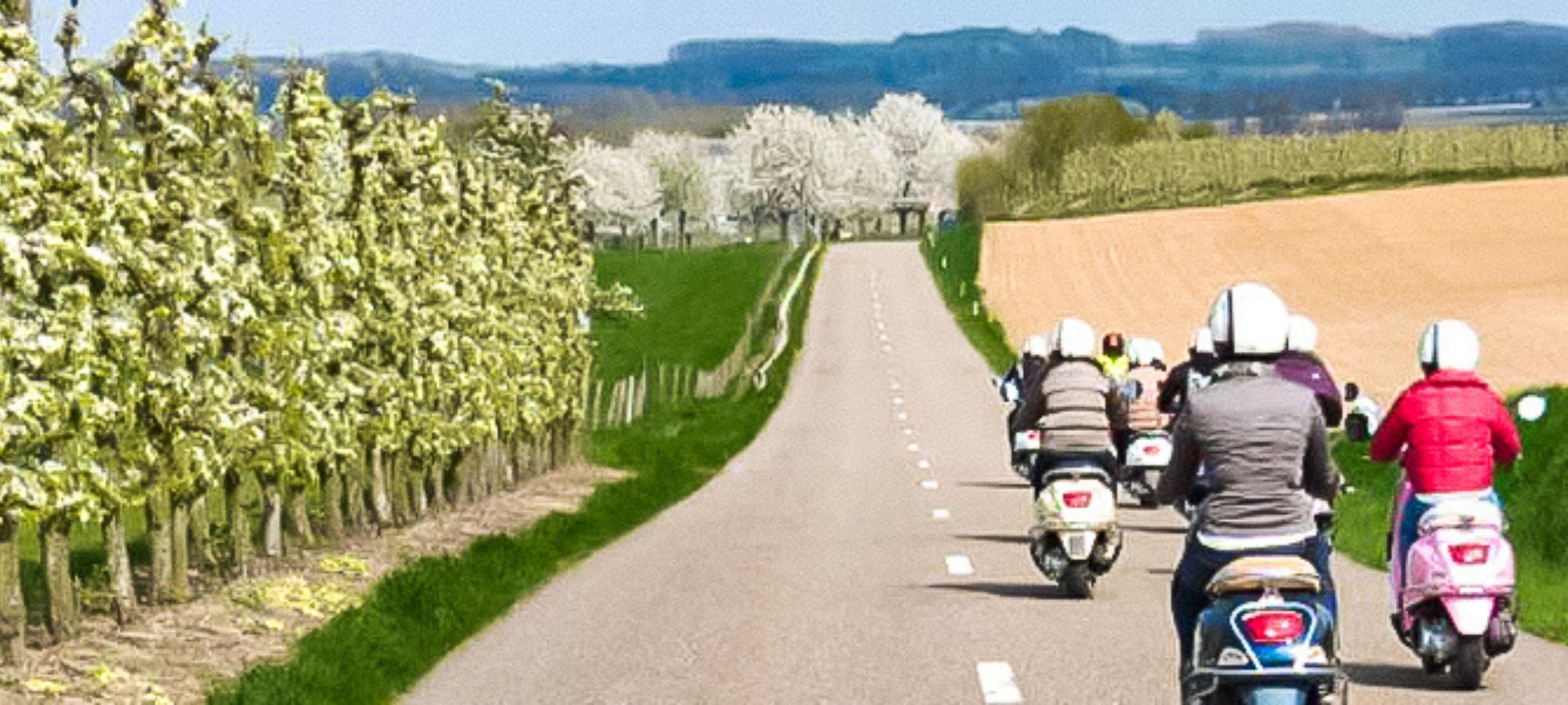 Vespa riders in a group riding through Haspengouw, Belgium