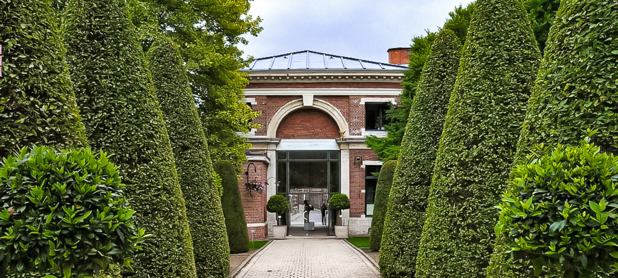 A row of large, trimmed trees lining the path to the entrance of the building at Kruidtuin in Leuven, Belgium