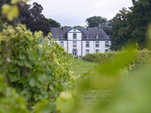 Wine Castle of Genoels-Elderen