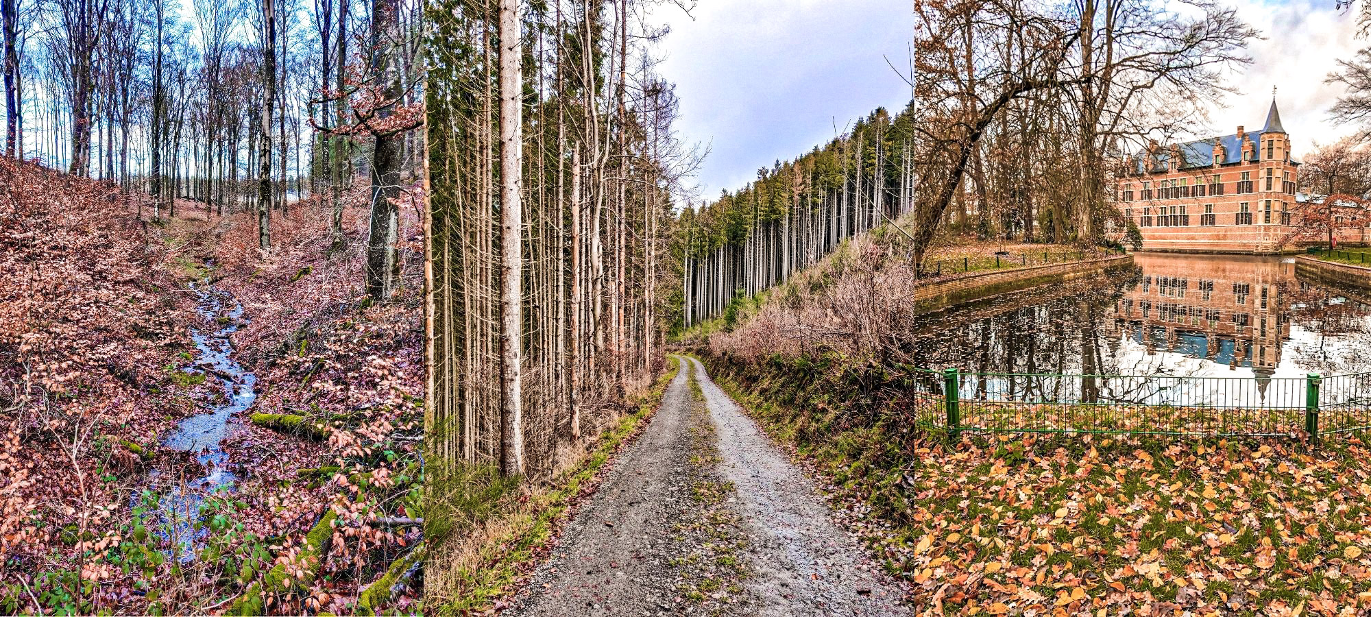 Three nature shots of Belgium across the country on walking paths