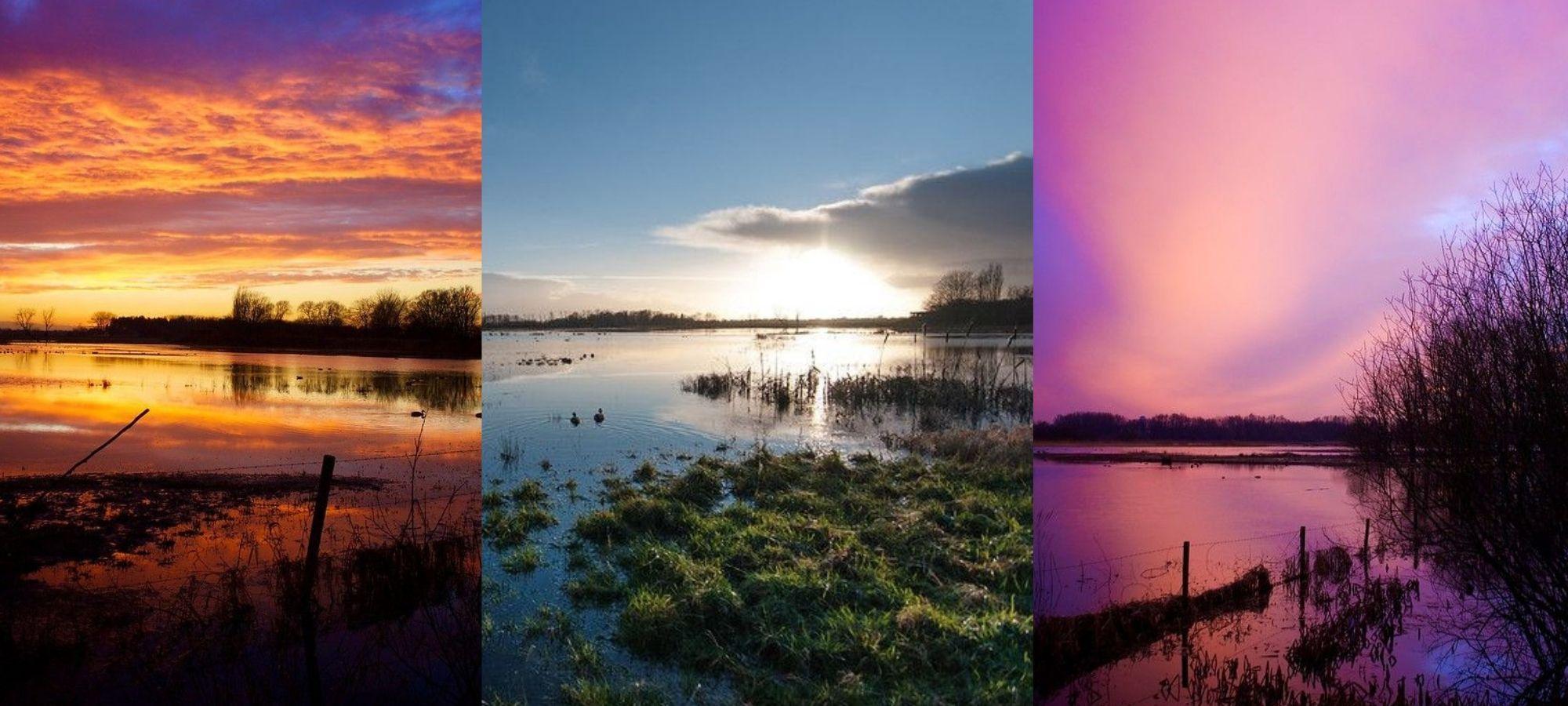 Sunset and sunrise at nature reserve Bourgoyen-Ossemeersen