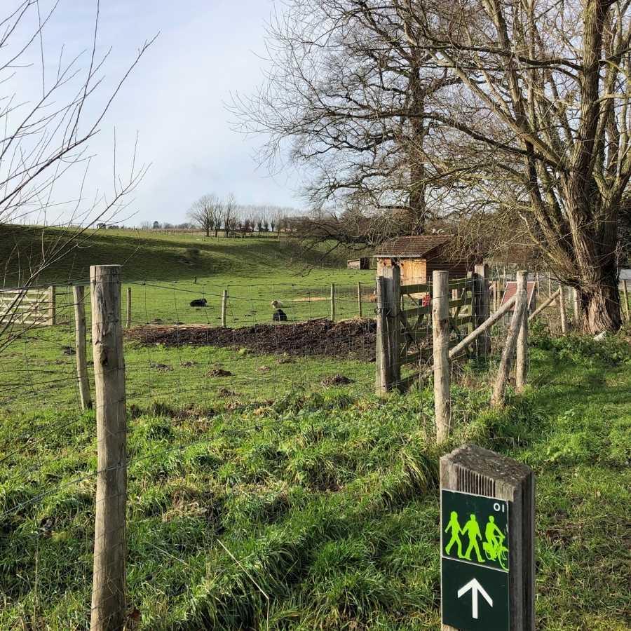 Farmland along the Green Walk, Brussels