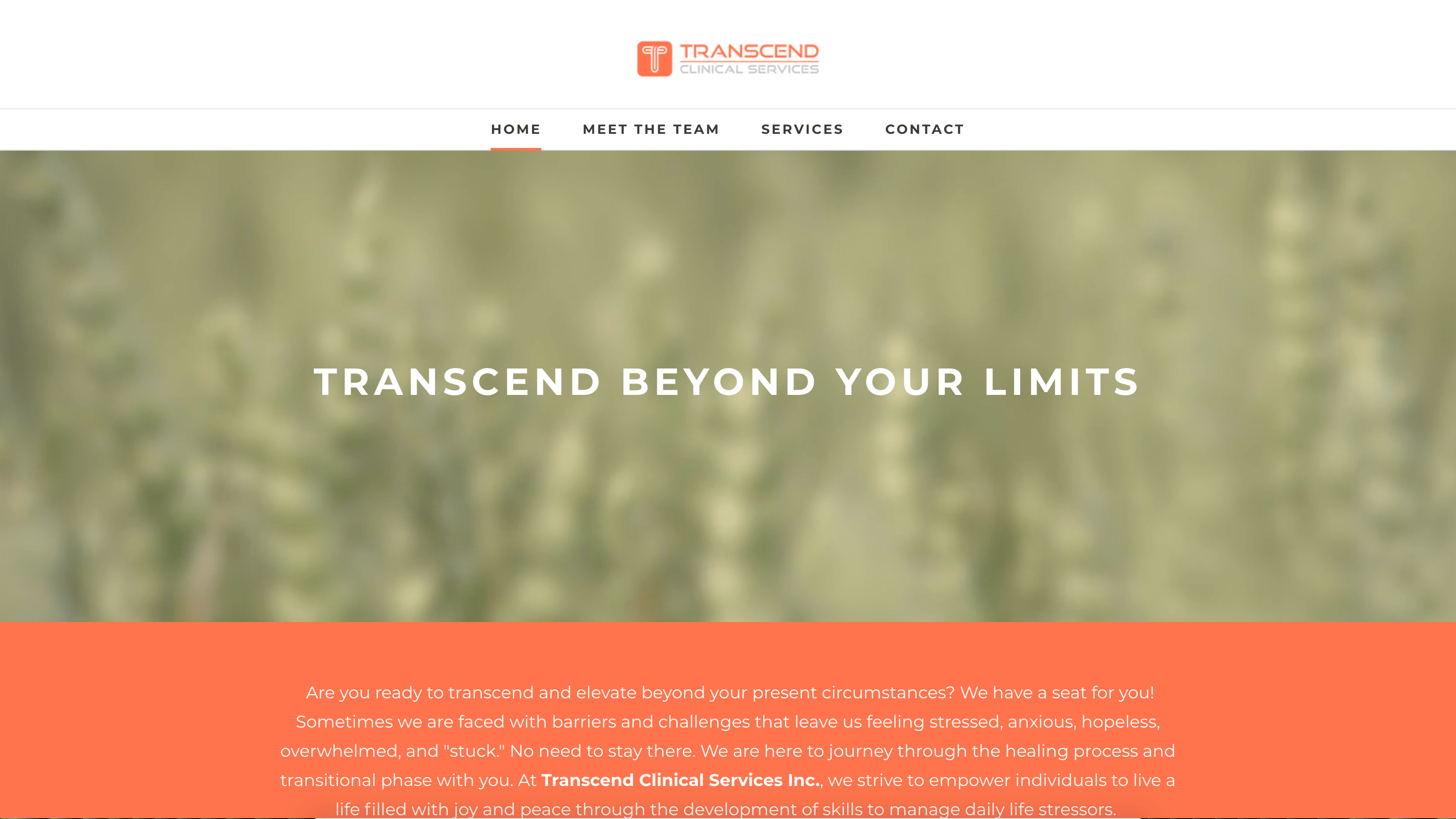 Transcend clinical services web design