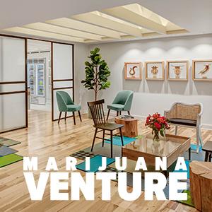 Marijuana Venture - 22 Amazing Retail Spaces