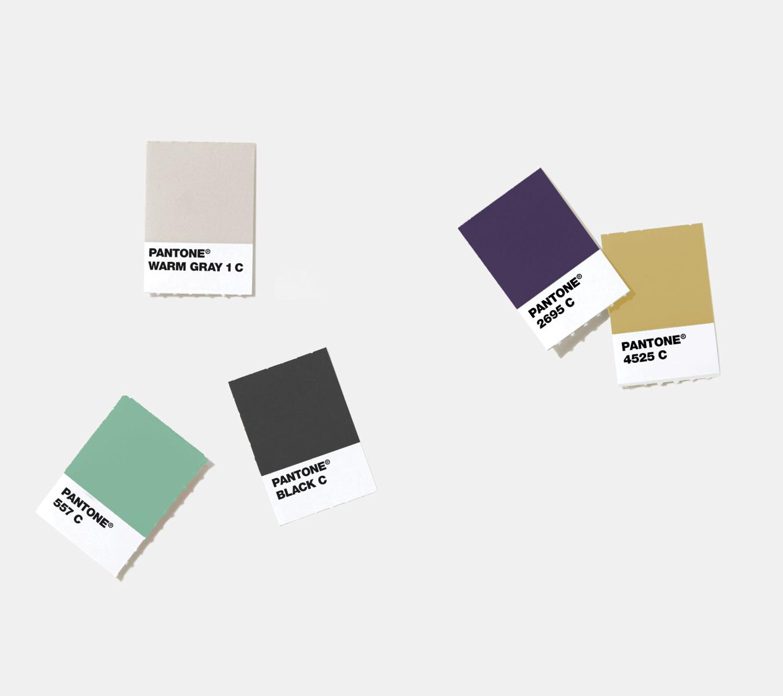 Royal Highness Color Palette Development by High Road Design Studio
