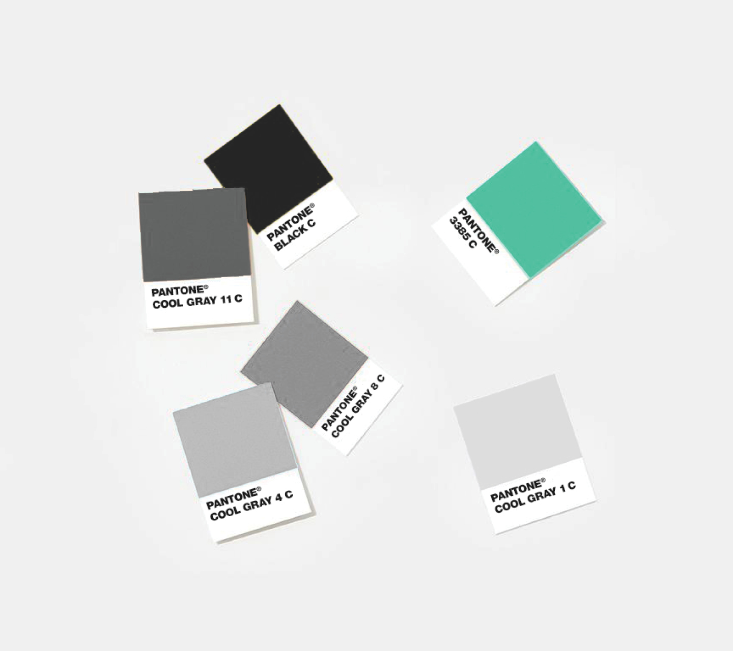 Elevate Dispensary Color Palette Development by High Road Design Studio