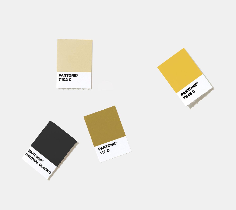 Ounces Color Palette & Pattern Development by High Road Design Studio