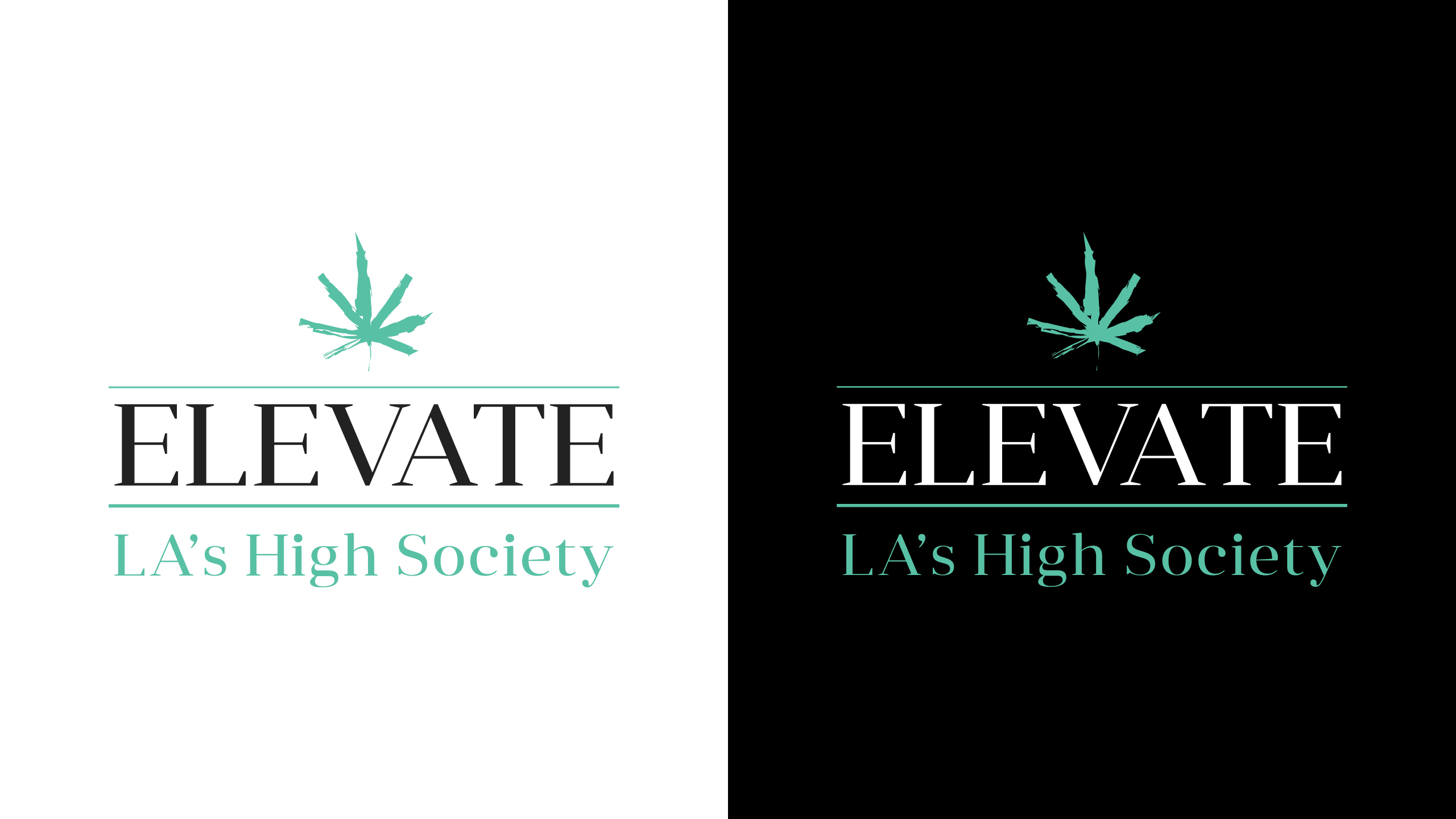 Elevate Dispensary Brand Identity & Logo Creation by High Road Design Studio