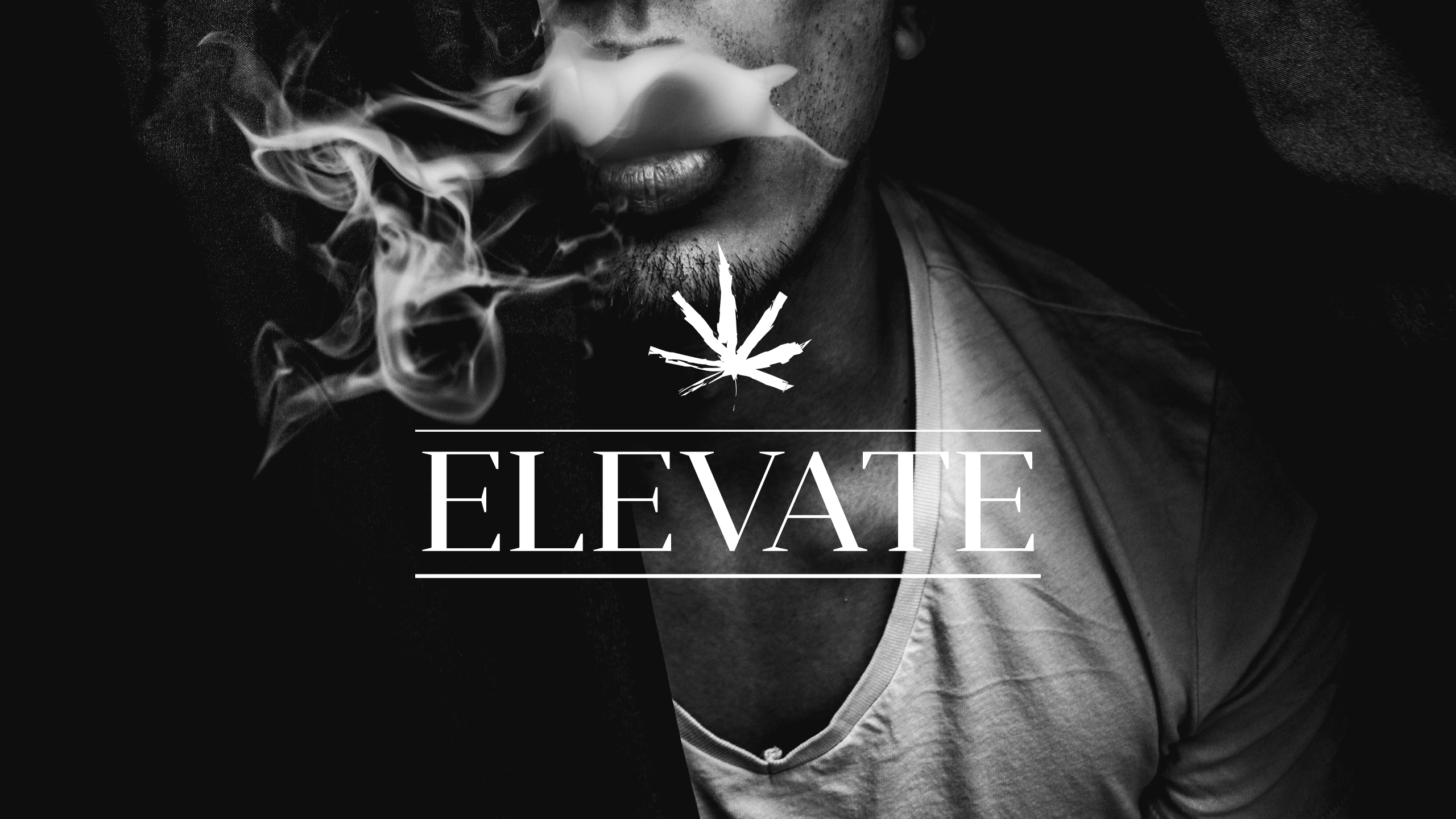 Elevate Dispensary Brand Photography Selection by High Road Design Studio