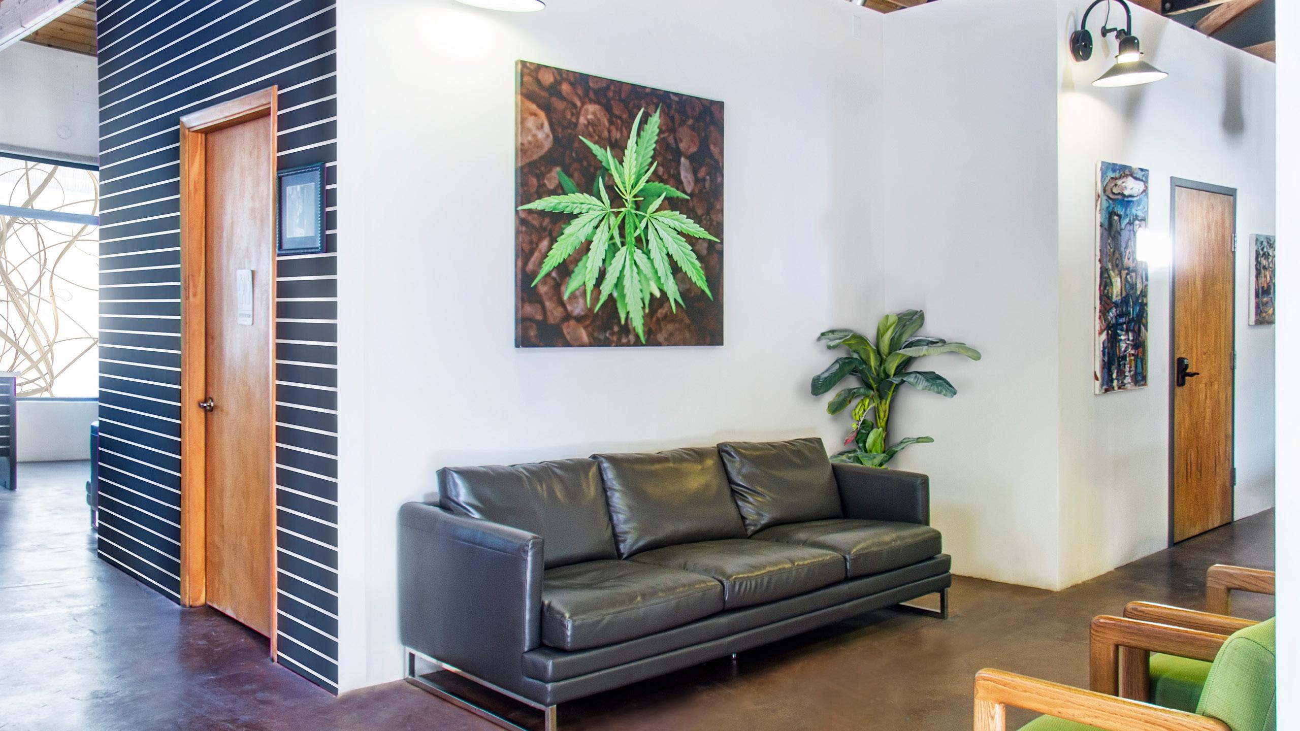 Minerva Canna Group Retail Interior Design by High Road Design Studio