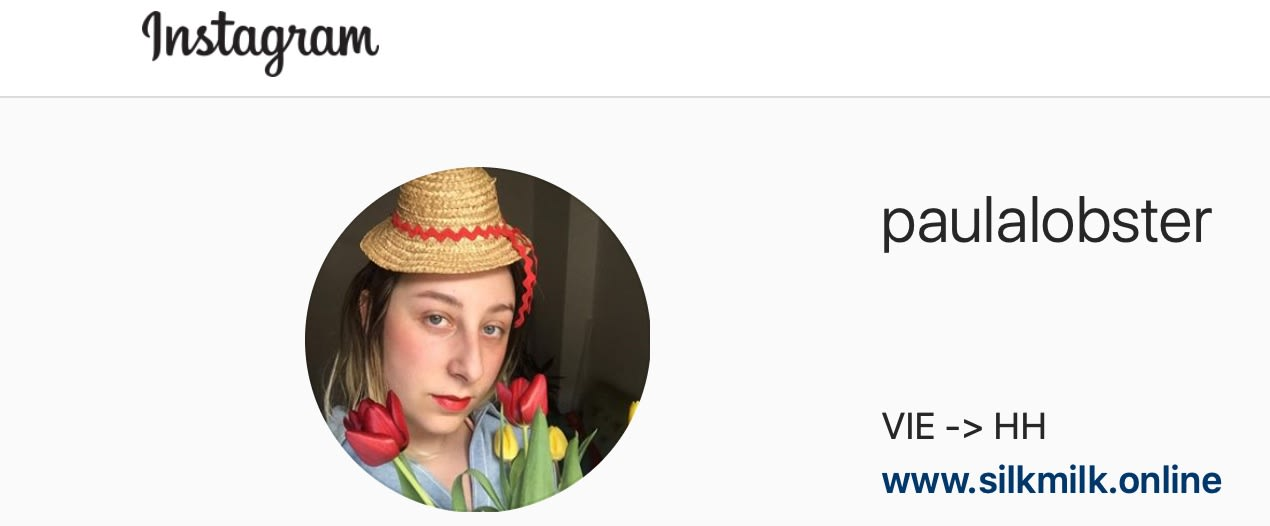 paula hummer, female, artist, on instagram